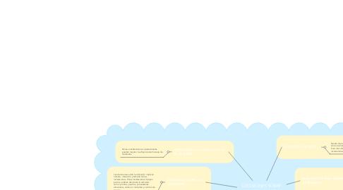 Mind Map: DECISIONES SOBRE ALMACENAMIENTO Y MANEJO