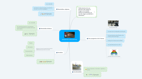 Mind Map: MUERTES VIOLENTAS