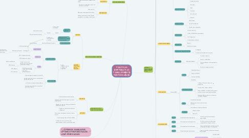 Mind Map: POLÍTICAS EMPRESARIAS FAMILIARMENTE RESPONSABLES