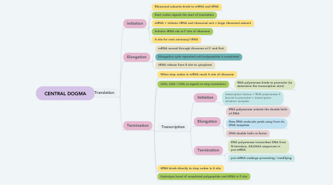 Mind Map: CENTRAL DOGMA