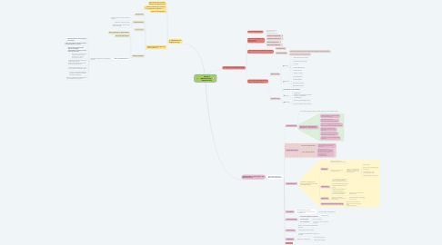 Mind Map: Lektion 4 Marktforschung + Segmentierung