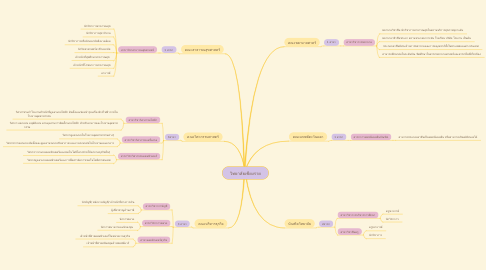 Mind Map: วิทยาลัยเชียงราย
