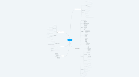 Mind Map: Legal Project