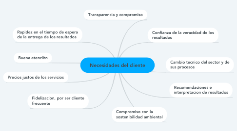 Mind Map: Necesidades del cliente