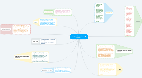 Mind Map: chapter -2 nutrition in ANIMALS