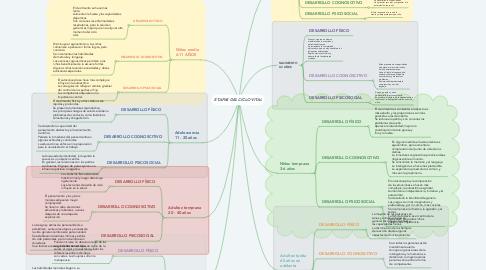 Mind Map: ETAPAS DEL CICLO VITAL