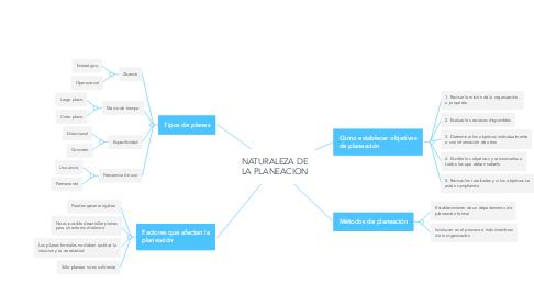 Mind Map: NATURALEZA DE LA PLANEACION