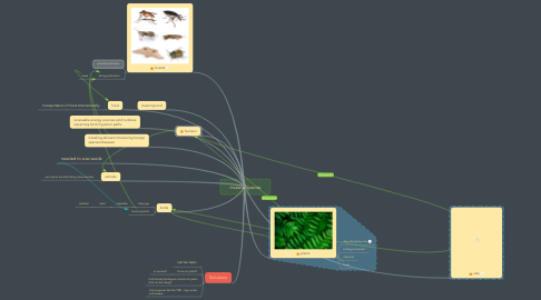 Mind Map: Invasive Species
