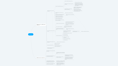 Mind Map: BS Story
