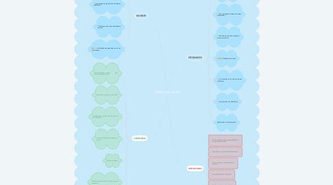 Mind Map: DIARIOS DE CAMPO