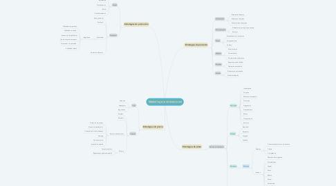 Mind Map: Marketing mix internacional