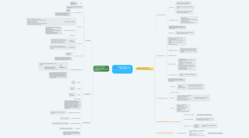 Mind Map: RIESGOS EN HYS INDUSTRIAL