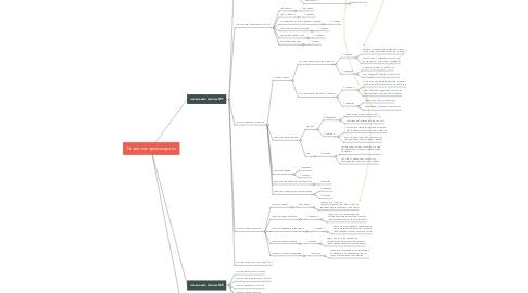 Mind Map: Технический директор