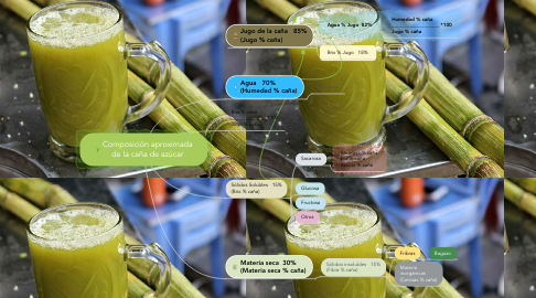 Mind Map: Composición aproximada de la caña de azúcar