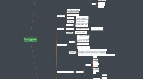 Mind Map: S2 Actividad 1.1 Mapa Conceptual