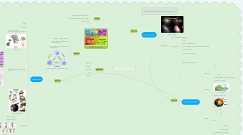 Mind Map: CIENCIAS NATURALES
