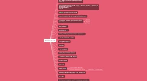 Mind Map: NÚCLEO CELULAR