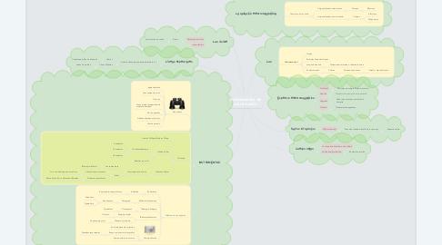 Mind Map: Instrumentos de observación
