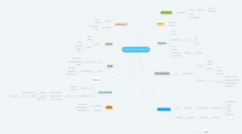 Mind Map: EL MUNDO DE DESEMPLEO