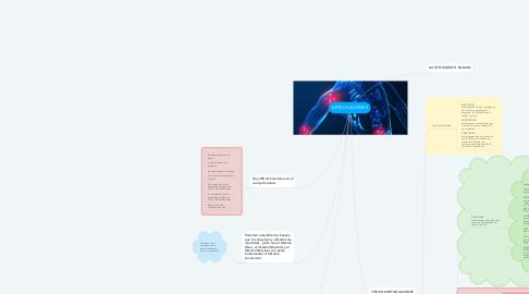 Mind Map: ARTICULACIONES