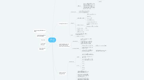 Mind Map: đường lối cách mạng