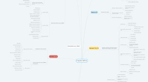 Mind Map: Programa Analítico