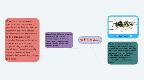Mind Map: Wasps