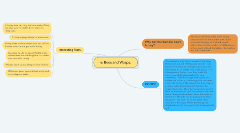 Mind Map: Bees and Wasps.