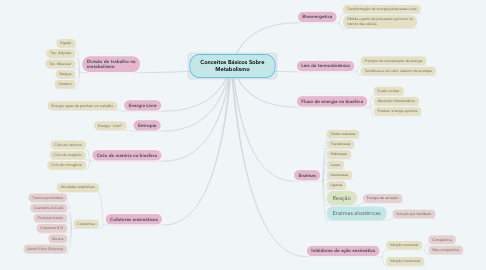 Mind Map: Conceitos Básicos Sobre Metabolismo