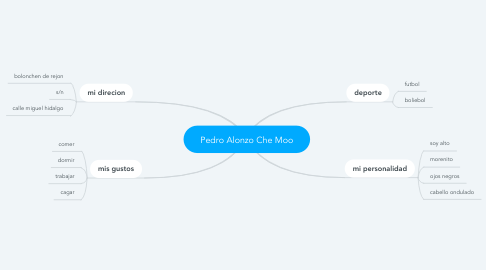 Mind Map: Pedro Alonzo Che Moo
