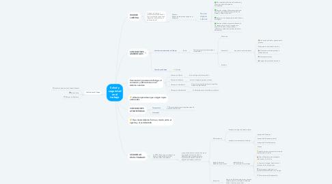 Mind Map: Salud y seguridad en el trabajo