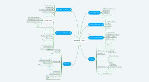 Mind Map: BACKOFFICE - AMAGGI
