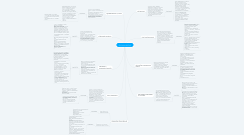 Mind Map: dimensiones prioritaria
