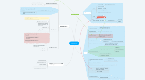 Mind Map: Remote DM