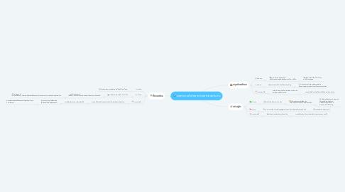 Mind Map: ผลกระทบที่เกิดจากการสร้างสนามบิน