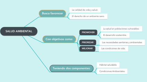 Mind Map: SALUD AMBIENTAL