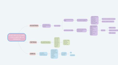 Mind Map: BASES MOLECULARES Y CELULARES DE LA HERENCIA