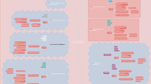 Mind Map: PROJETO EXECUTIVO - LAGOA DO TABAPUÁ