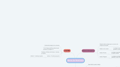 Mind Map: Bases de Nutrición