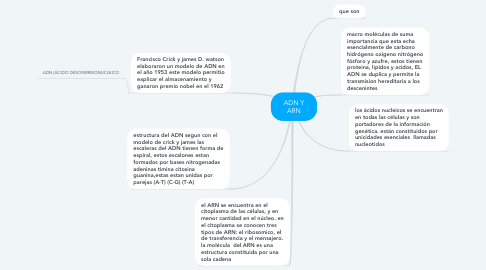 Mind Map: ADN Y ARN