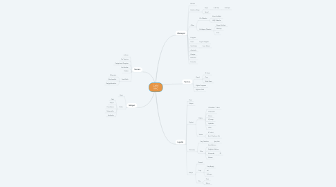 Mind Map: ÇARE UBÇ