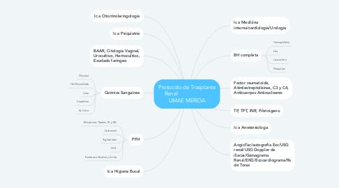 Mind Map: Protocolo de Trasplante Renal                       UMAE MERIDA
