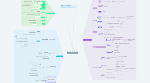Mind Map: VISIÓN Y ENVEJECIMIENTO