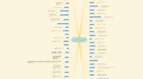 """Mind Map: la re-evolución """"del agua vengo y al agua voy"""""""