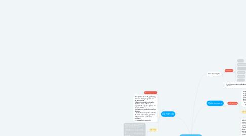 Mind Map: Posiciones arancelarias