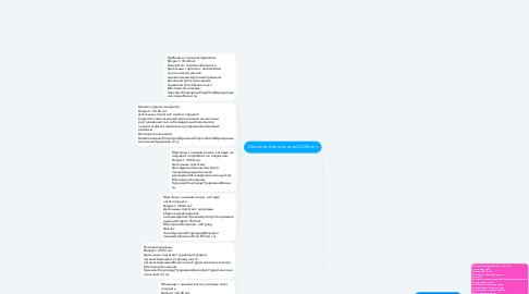 Mind Map: Сегментация ЦА для EMS-тренировок INFIT