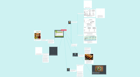 Mind Map: Diet Planning Tools