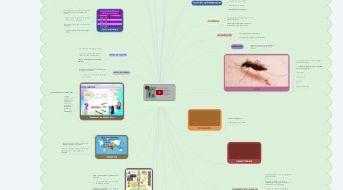 Mind Map: términos epidemiológicos
