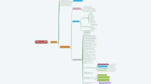 Mind Map: Sheik Agência  (Mapeamento de processos)