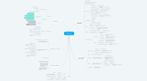 Mind Map: ORGANIZACIÓN E INSTITUCIÓN